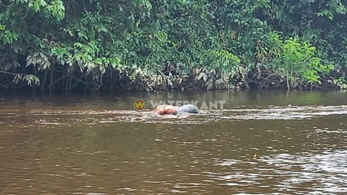 Lijk van man in verre staat van ontbinding geborgen uit Pararivier