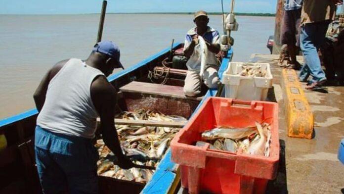 LVV geeft toestemming voor visserijactiviteiten tot monding Corantijnrivier