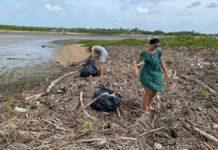 VIDEO: Grote schoonmaak strand Braamspunt voor nesten zeeschildpadden