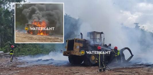 VIDEO: Boomstammen lader in brand gevlogen