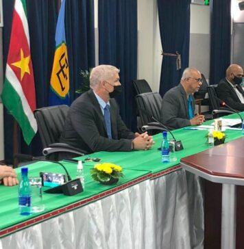 Denen bouwen grote waterstofcentrale in Suriname