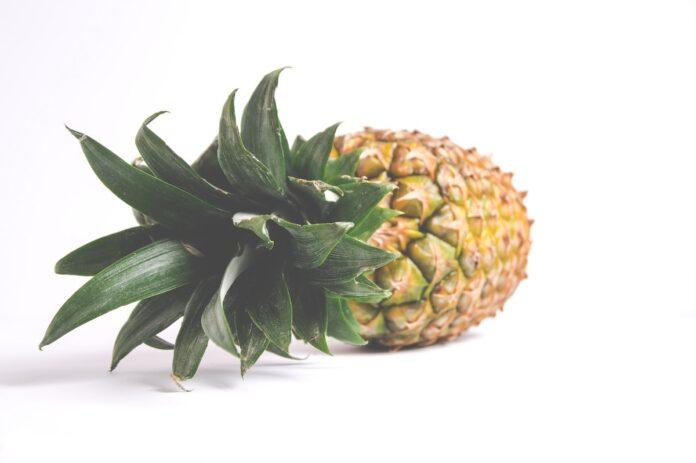 'Ananasproductie in Suriname kan 2e deviezenverdiener landbouw worden'