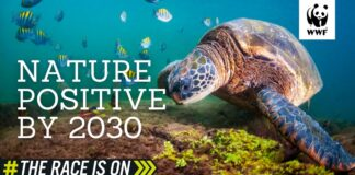 WWF: Ondertekening Leaders Pledge for Nature door Suriname en Guyana op het juiste moment