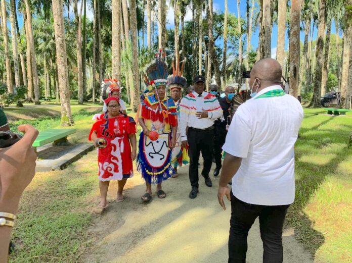 VP Brunswijk roept inheemsen op zich te bundelen