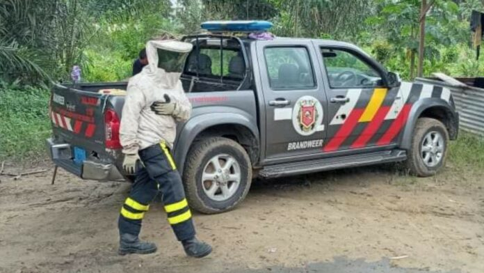 brandweer-bij-bijen-melding