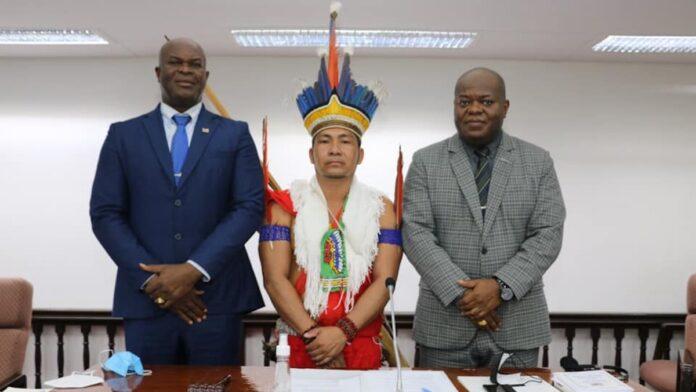 VIDEO: DNA-lid Renet Wahki is eerste Trio-inheemse in parlement Suriname