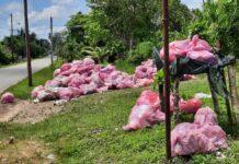 Huisvuil problematiek Saramacca nu op bord Openbaar Groen en Afvalbeheer
